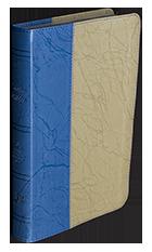 New biblias-29copia140