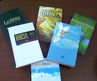 bibliasentregadas381