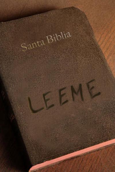 Tres Razones Por Las Que Los Cristianos No Leen La Biblia