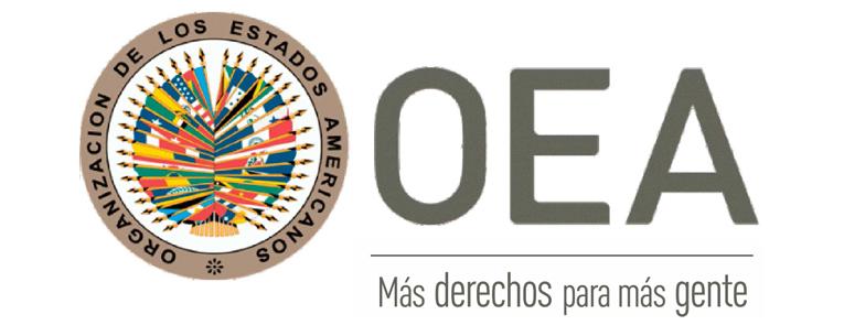 La OEA acusó recibo ante la Declaración de AEL sobre Vida, Familia, Libertad de Conciencia, Libertad Religiosa y Educación con valores